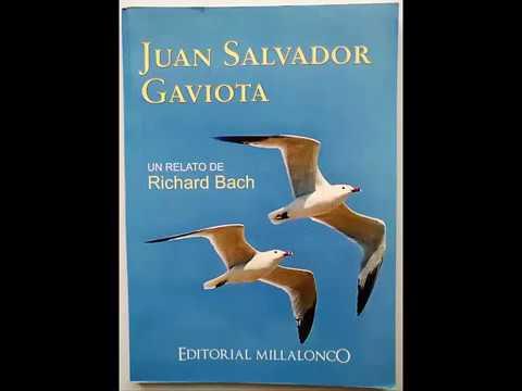 Reseña del Libro Juan Salvador Gaviota
